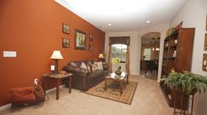 12 images and ideas burnt orange paint colors walls homes