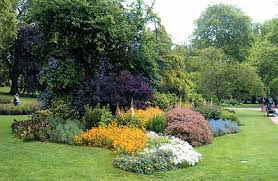 phoenix landscaping company phoenix az landscape design
