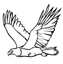 100 harpy eagle coloring page birds in the classroom