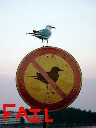 Fail Meme - image 22 fail epic fail know your meme