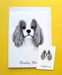 cavalier king charles spaniel birthday card gift tag