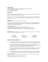 resume management objective project management objective resume