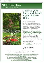 White Flower Farm Coupon Code - 75 best survey emails images on pinterest email design email
