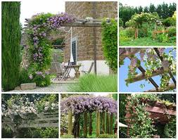Arbors And Pergolas by 19 Best Climbing Plants For Pergolas Arbors And Fences U2013 Iseeidoimake