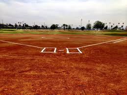softball athletic website