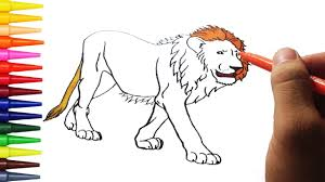 how to draw animal lion and coloring pages for kids learning