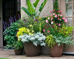 Potted Plant Ideas For Patio by 45 Best Patio Flowers Images On Pinterest Pots Flowers And