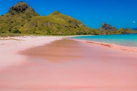 10 pink beaches and lakes