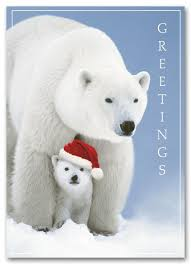 animal cards polar cub ref hs1301