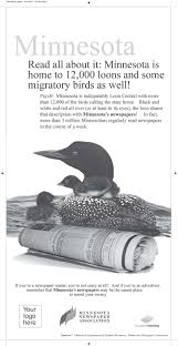 national loon yearbook 56 best impressed newspaper marketing promotion images on