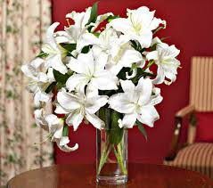 Casablanca Lily My Favorite Flowers Casablanca Lilies These Are A Few Of My