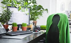 plants for office desk green power office plants make you more productive associations now