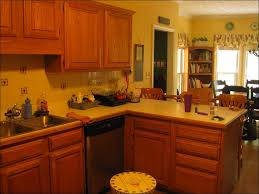 Best Paint Colors For Kitchen With Oak Cabinets 100 Best Paint Colors For Kitchens With Oak Cabinets