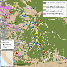 ft cbell map survival and mortality of pumas concolor in a fragmented