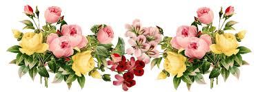 flowers vintage png cartoon frame design clipart best