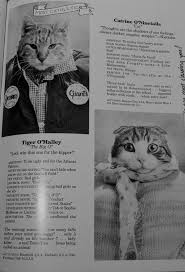 cat high yearbook quite possibly the most awesome thing you will see today cat high