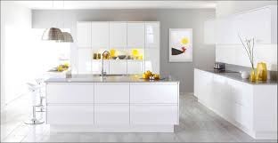 All White Kitchen Cabinets White Modern Kitchen Thomasmoorehomes Com