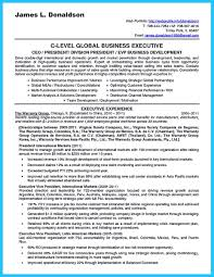 resume accomplishments examples over 10000 cv and resume samples with free download business business development sample resume business development administrator sample resume best words for the business development resume