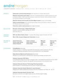resume format for freshers engineers eeeeee great looking resume templates resume sle