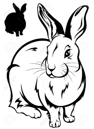 bunny outline stock photos royalty free bunny outline images and