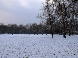 of green park and hyde park and the winter central
