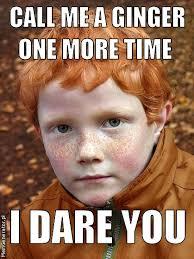 Ginger Meme - memgenerator pl mem generator