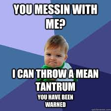 Tantrum Meme - you messin with me i can throw a mean tantrum you have been
