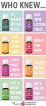 best essential oils for bed bugs bed bug pest