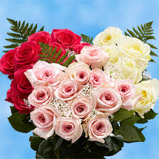 Dozen Of Roses 3 Dozen Roses Free Next Day Delivery Global Rose