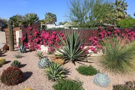 maintenance front yard landscaping ideas