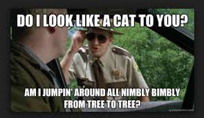 Super Meme - 20 super troopers memes everyone s sharing sayingimages com