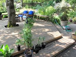 Patio Around Tree Best 25 Deck Around Trees Ideas On Pinterest Tree Deck Tree