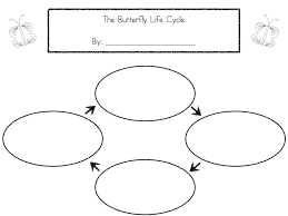 lifecycles lessons tes teach