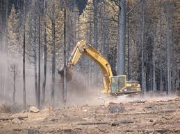 Wildfire Suppression Equipment by Forest Lands May Benefit From Active Restoration After Wildfire