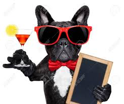 martini cocktail cartoon french bulldog dog holding martini cocktail glass ready to have