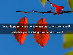 Complementary Colors by Color My World By Margo Thornbury