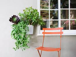 living room 2017 living wall planter succulents lowres
