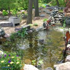 inspirational backyard fish pond home design