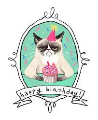 grumpy cat birthday card winclab info