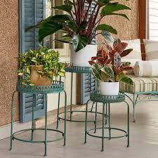 Indoor Gardening by Indoor Gardening White Flower Farm