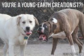Meme Dog - a meme about dogs god of evolution