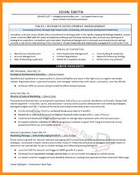 Marketing Director Resume Summary Sales Resumes Examples It Sales Manager Resume Example Managment