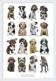 58 best quadro de animais e pets images on pinterest animals choose from the widest range of art photographic prints wall art murals and wholesale posters online poster plus is your one stop art destination in