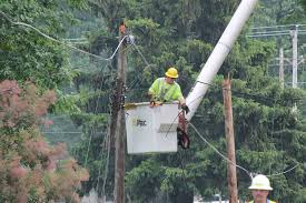 grand haven board of light and power grand haven tribune squirrel tree limbs to blame for outages in