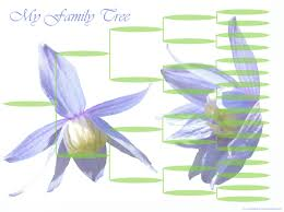 printable free family tree template blank family trees templates and free genealogy graphics family