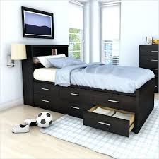 Walmart Bed Frame With Storage Storage Bed Frame Robys Co