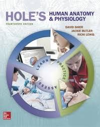 Human Anatomy Textbook Pdf Hole U0027s Essentials Of Human Anatomy U0026 Physiology 13th Edition