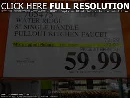 hansgrohe kitchen faucet costco sinks and faucets decoration