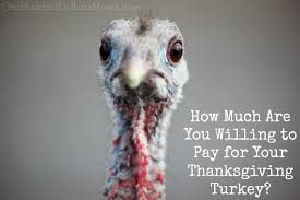 how much are you willing to pay for your thanksgiving turkey one