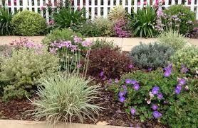 Drought Tolerant Backyard Ideas Drought Tolerant Garden Design Photos On Fancy Home Interior